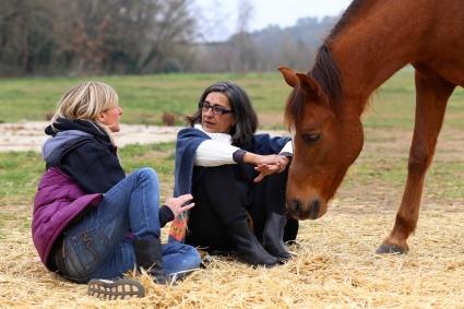 intel·ligència emocional cavalls,coaching amb cavalls girona
