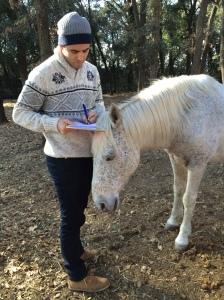 intel·ligència emocional amb cavalls Girona i vic, coaching cavalls girona i osona