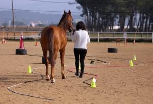 Avança Coaching PNL i Coaching cavalls Girona i Vic coaching girona i osona