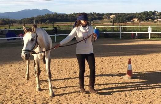 Avança Coaching PNL i Coaching cavalls Girona coaching girona Intel·ligència emocional cavalls. Coaching con caballos