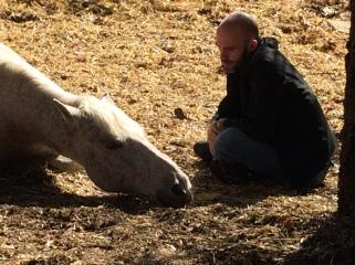 Avança Coaching PNL i Coaching cavalls Girona i Vic coaching girona i osona Intel·ligència emocional cavalls. Coaching con caballos