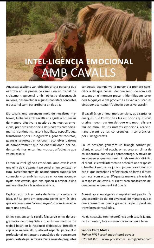 Coaching amb cavalls_creixement personal cavalls_ Girona_ Girosalut_ Sandra Carré