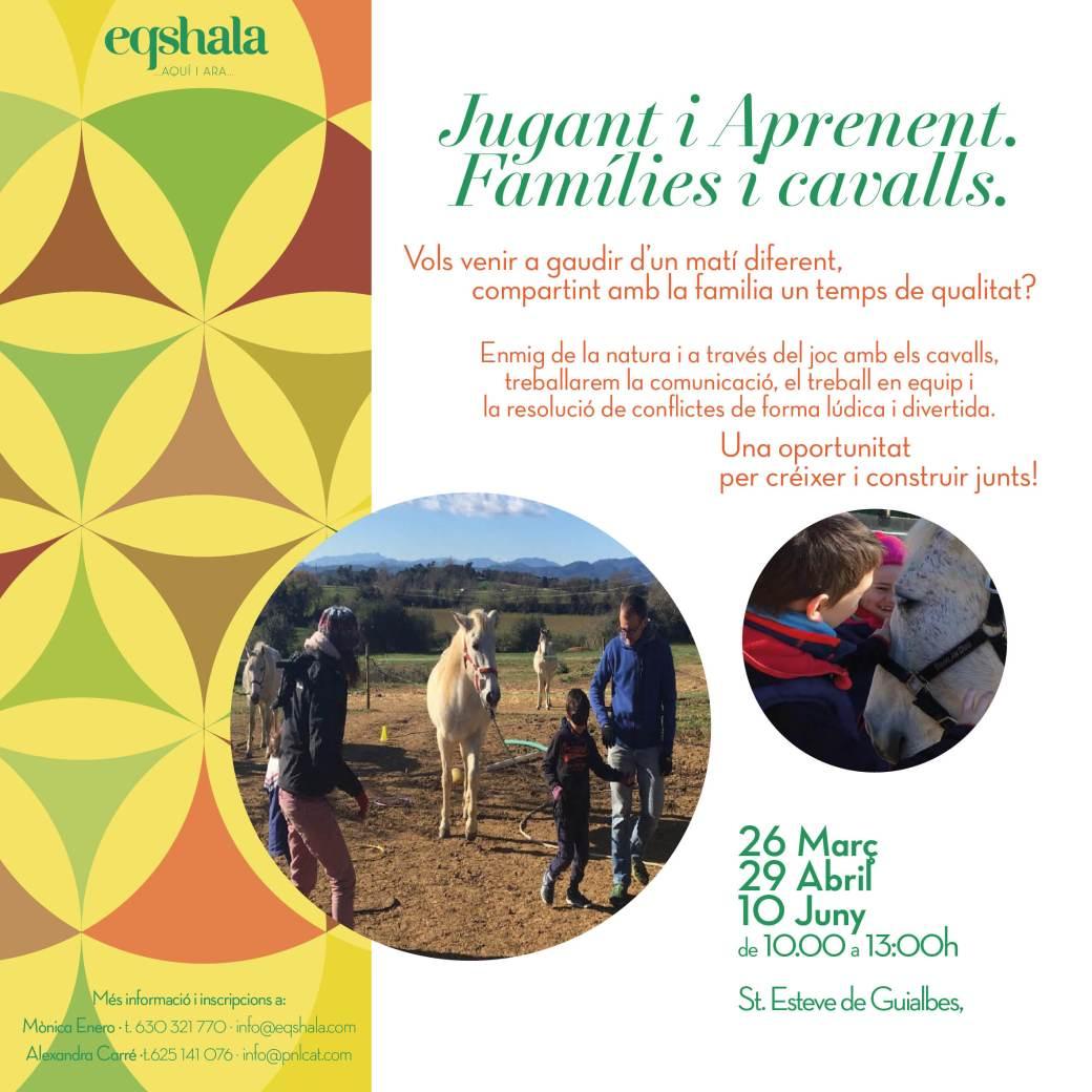 tallers-families-i-cavalls-primavera-17