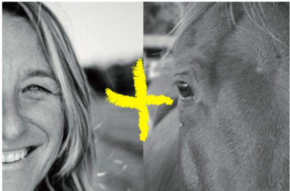 Avança Coaching PNL i Coaching amb cavalls. Girona i Vic