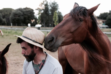 Avança Coaching PNL i Coaching amb cavalls. Girona i Vic coaching con caballos girona i osona