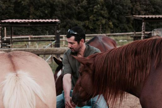 coaching amb cavalls girona osona pnl i coaching con caballos